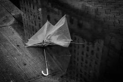 Umbrella, Philadelphia